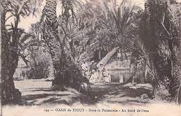 Afrique-Maroc (province De TAROUDANT /Souss-Massa-Drâa) Oasis De Tiout Dans La Palmeraie Au Bord De L'eau * PRIX FIXE - Maroc