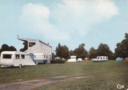 LAPALISSE - Le Camping - Lapalisse