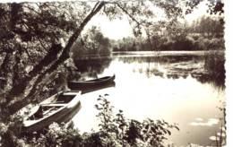 CPSM .Balizac Près De Villandraut.l'étang De La Ferrière - Autres Communes