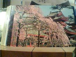 JAPAN  The Cherry Blossoms, The Hei An Shrine V1974 HA7701 - Giappone
