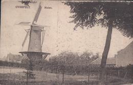 Overpelt Molen ( Moulin Windmolen ) - Overpelt