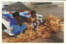 India Goa / Coconuts Noix De Coco Kokosnoot - Marchands