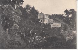 247 - Vessinaro - Portofino - Italy