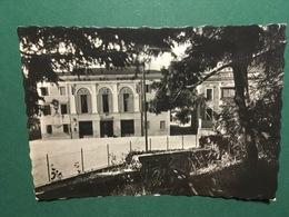 Cartolina  Quinzano Di Verona - La Casa Del Fascio - 1941 - Verona