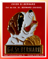 SUPER PIN'S CHIEN-REGION : CHIEN St BERNARD Pour Le COL Du GRAND SAINT BERNARD (SUISSE), émail Cloisonné Or 2,2X2,4cm - Animali