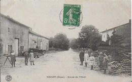 55- BONNET - AVENUE DES TILLEULS - France