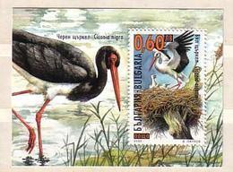 2000  BIRDS - Stork   S/S-MNH  BULGARIA  / Bulgarie - Bulgarie