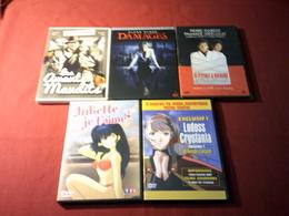 PROMO DVD  REF  91 °  LE LOT DES 5  DVD  POUR  20 EUROS °°° - Dessin Animé
