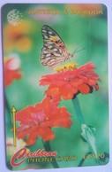 264CATA Flambeau (Butterfly) EC$20 - Antigua And Barbuda