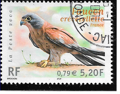 FRANCE 3361 Faucon Crécelle Oiseau Bird - France