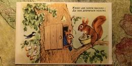 SQUIRREL HOUSE  - OLD Soviet PC 1954 -  Mushroom - Champignon - LITTLE TIT - Champignons