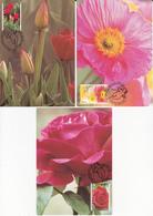 Série 3 CM Fleurs / Flowers (Roses-Tulips-Poppies)  - Timbres N° 1349/51 - 1994 - Cartes-Maximum (CM)