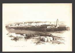 Ramleh - By D. Roberts 1839 - Ed. PLO (Palestine Liberation Organization) - Firm Paper 16 X 11 Cm - Palestine