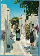 AEGINA - Island - Ile - Picturesque Road - Ruelle Pittoresque - Grèce