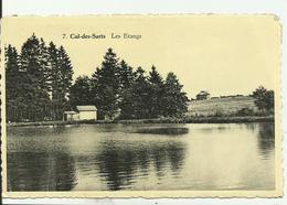 CUL-DES-SARTS   -les étangs. - Cul-des-Sarts