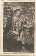 W906 San Severino Marche (Macerata) - Cattedrale - Madonna Della Pace Del Pinturicchio - Dipinto Paint Peinture - Pittura & Quadri
