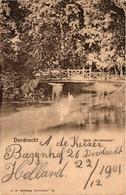 The Netherlands, Dordrecht, Park Merwestein, Old Postcard Pre. 1905 - Dordrecht