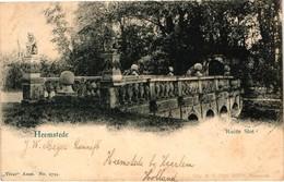The Netherlands, Heemstede, Ruine Slot, Old Postcard Pre. 1905 - Netherlands