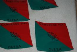 4 FANIONS CAMERONE 1969 - Drapeaux