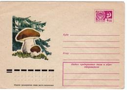 Enveloppe Entier Postal De Russie Champignon Cèpe - Pilze