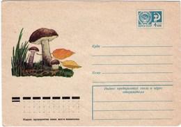 Enveloppe Entier Postal De Russie Champignon Bolet Rude - Pilze