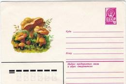 Enveloppe Entier Postal De Russie Champignon Girolle - Pilze