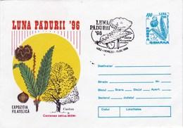 Enveloppe Entier Postal De Roumanie Champignon - Pilze