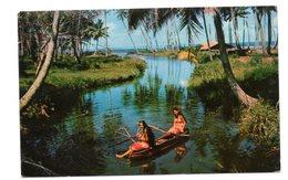 Tahiti -la Rivière à Hitiaa - Polynésie Française