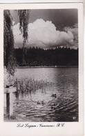 VANCOUVER LOST LAGOON  AUTENTICA 100% - Vancouver