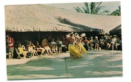 Tahiti  -  Spectacle De Danse Tahisienne - Polynésie Française