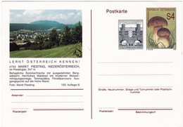 Carte Entier Postal D' Autriche Champignon Cèpe - Pilze
