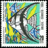 BRAZIL #1129 - Fish Farming -  Fishkeeping - Angel Fish - 1969 - Brazil