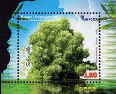 Bosnia & Herzegovina - Sarajevo - 2018 - Trees - White Willow - Mint Souvenir Sheet - Bosnien-Herzegowina