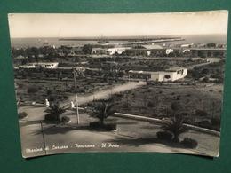 Cartolina Marina Di Carrara - Panorama - Il Porto - 1953 - Massa