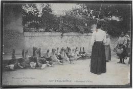 Lot Et Garonne - Gardeuse D'Oies - France