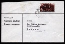 A5844) Liechtenstein Brief Triesen 21.07.41 N. Schaan EF Mi.192 - Liechtenstein