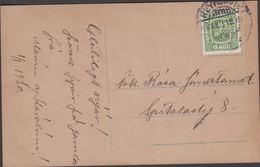 1915. Two Kings. 5 Aur Green. Perf. 14x14½, Wm. Cross. REYKJAVIK 31. XII 1919. Postca... (Michel 79) - JF310128 - 1873-1918 Dipendenza Danese