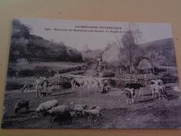 Environs De Guémené-Sur-Scorff - Le Moulin De Nicole - Moulins à Eau