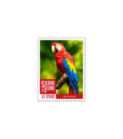 SIERRA LEONE 2018 MNH Red Parrot 1v - OFFICIAL ISSUE - DH1902 - Sierra Leone (1961-...)