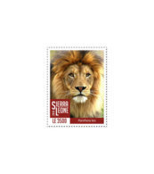 SIERRA LEONE 2018 MNH Lions III 1v - OFFICIAL ISSUE - DH1902 - Sierra Leone (1961-...)