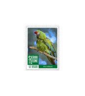 SIERRA LEONE 2018 MNH Green Parrot 1v - OFFICIAL ISSUE - DH1902 - Sierra Leone (1961-...)