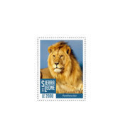 SIERRA LEONE 2018 MNH Lions II 1v - OFFICIAL ISSUE - DH1902 - Sierra Leone (1961-...)