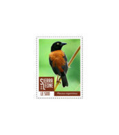 SIERRA LEONE 2018 MNH Birds 1v - OFFICIAL ISSUE - DH1902 - Sierra Leone (1961-...)