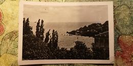 Ukraine, Odessa  - ARKADIA Resort , Old PC 1955 - Ukraine