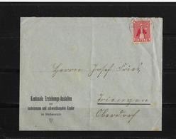 1917 HEIMAT LUZERN → Brief Kant.Erziehungsanstalten Hohenrain Nach Oberdorf - Suisse