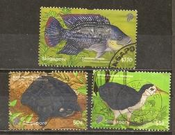 Singapour Singapore 2011 Nature Wildlife Avec Oiseau Bird Tortoise, EtcObl - Singapore (1959-...)