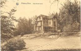 Flobecq-Bois NA15: Villa Hallet-Jouret - Flobecq - Vloesberg