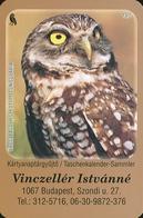 OWL * BURROWING OWL * BIRD * ANIMAL * BUDAPEST * CALENDAR * GY 2008 07 * Hungary - Petit Format : 2001-...