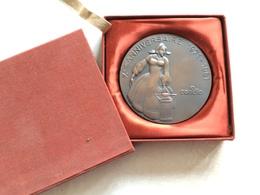 Grosse Médaille En Bronze 9 ème Anniversaire De CANDIA  1971 1981 ( Lait Laiterie ) Signé Prisme Avec Sa Boite - Francia