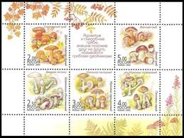 RUSSIA 2003 Sheet MNH ** VF Mi 1108-12 MUSHROOM MUSHROOMS PLANTS PILZE PILZ CHAMPIGNON CHAMPIGNONS 876-80 - Hongos